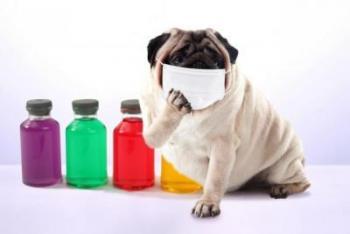 インフルエンザの落とし穴。